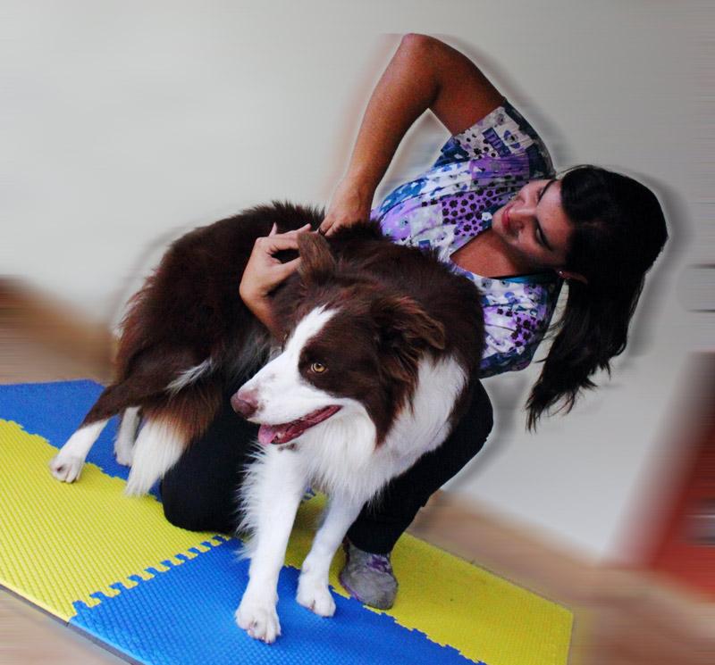Quiropraxia Canina